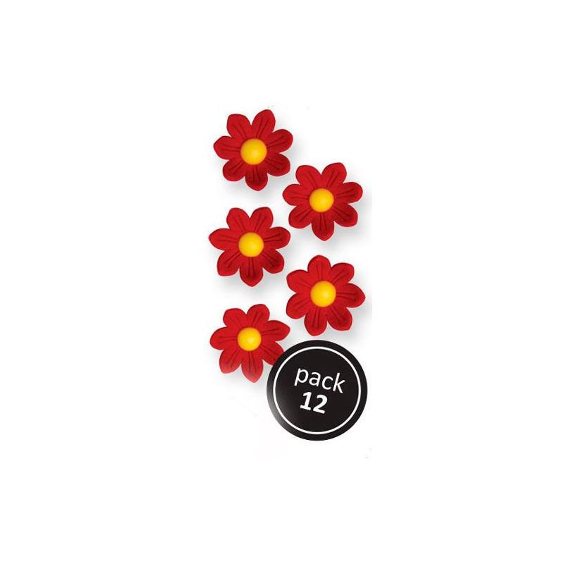 Decoraciones de azúcar Flores blancas 30 unidades PME [CLONE] [CLONE] [CLONE]