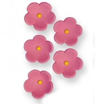 Decoraciones de azúcar Flores blancas 30 unidades PME [CLONE]