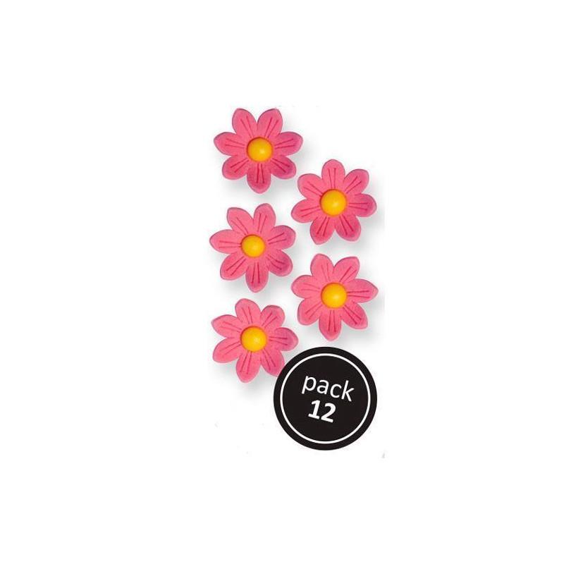 Decoraciones de azúcar Flores blancas 30 unidades PME [CLONE] [CLONE]