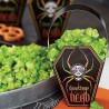 Cajas para presentar dulces Ataúd Calavera Halloween Wilton