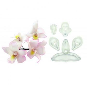 Cortante pack 5 cortantes Orquídea Singapur