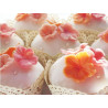 Set Blossom : cortador+molde silicona+polvo brillo edible shimmer - Pink Blush +brocha Blossom