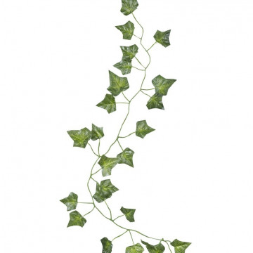 Guirnalda Hojas de Parra Beautiful Botanics