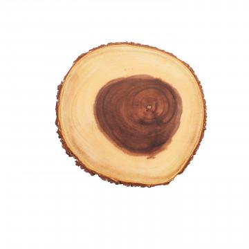 Rodaja de tronco de árbol redondo Artesa