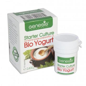 Fermentos para hacer yogurt Búlgaro con Bífidus Genesis