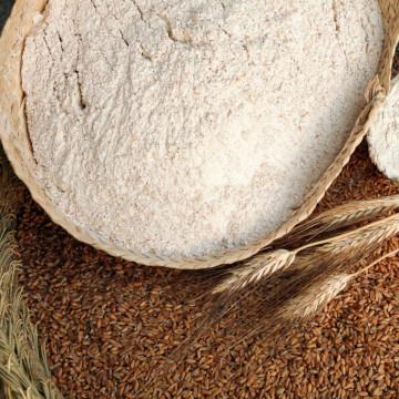 Harina de Espelta Bio Ecológica 1kg San Antonio