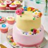 Pack 5 Fondant Tonos Rosa 5x100g Funcakes